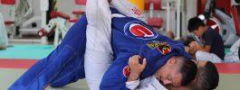 Lesiones de artes marciales